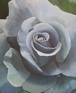 Blue Boy Rose