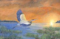 Great Blue Heron Paradise