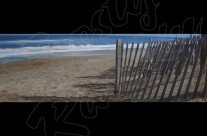 Dune Pickets